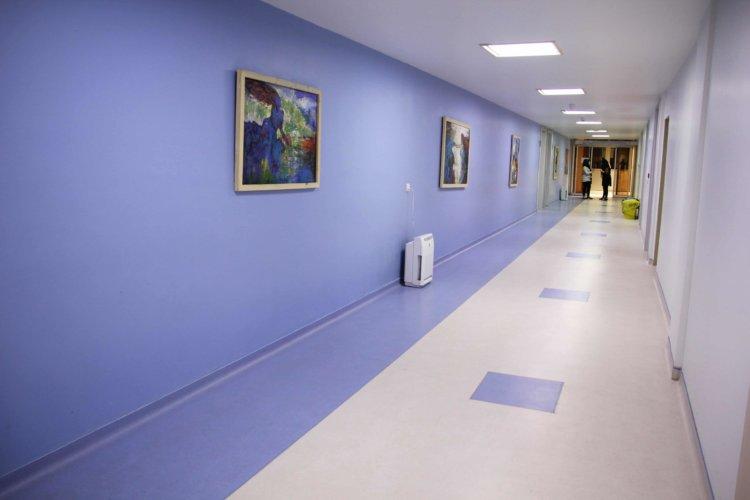 Hiwa Hospital